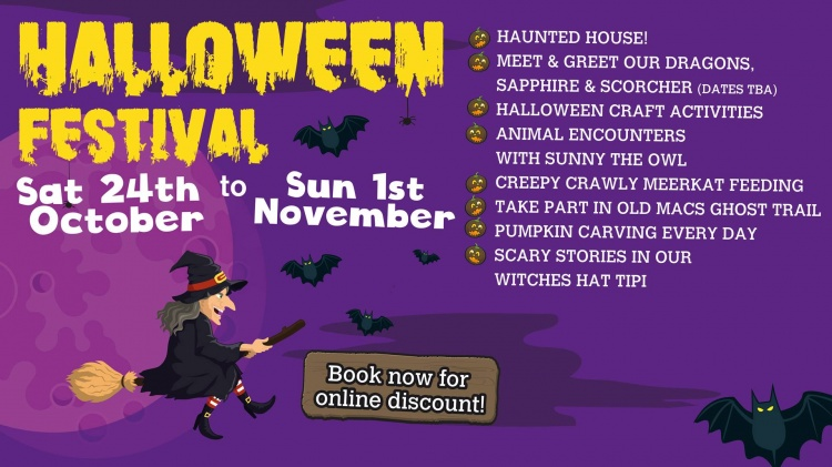 Halloween Festival at Old MacDonalds Farm - SOLD OUT!
