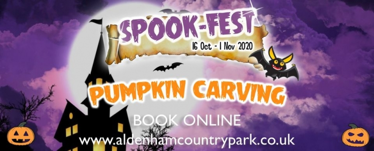 Aldenham Country Park Spook Fest